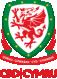 Cymdeithas Bêl-droed Cymru